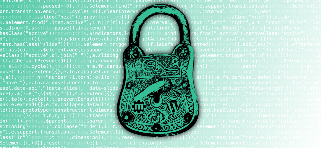 The ultimate 12 step WordPress security guide
